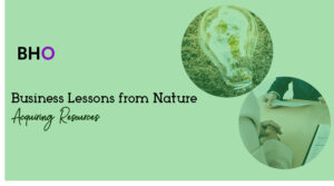 Business Lessons from Nature: Acquiring Resources