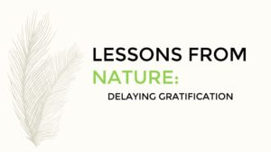 Read more about the article Lessons From Nature: Delaying Gratification
