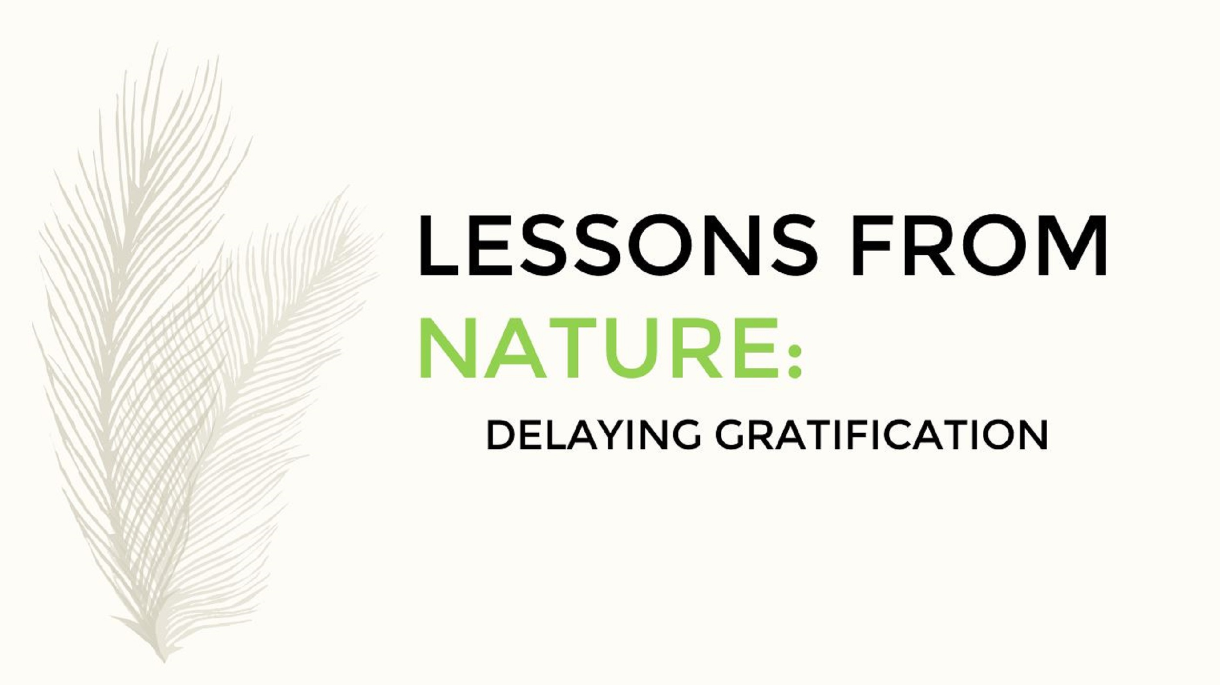 Lessons From Nature: Delaying Gratification