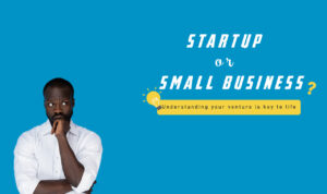 Startup or Small Business: Understanding Your Venture is Key to its Life