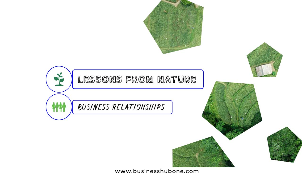Lessons From Nature: Business Relationships