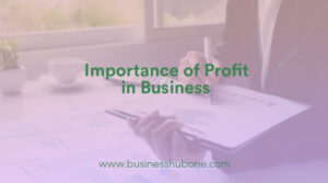 Why is profit important in Business?