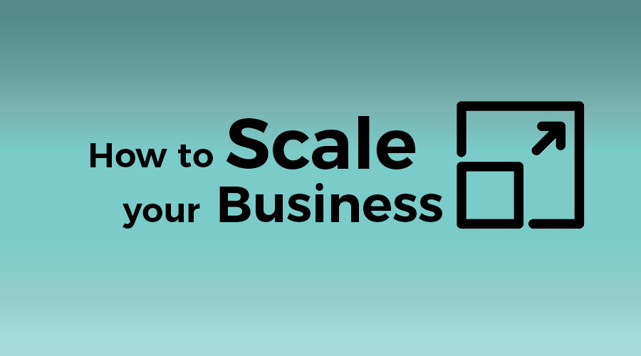 Read more about the article How to Scale your Business